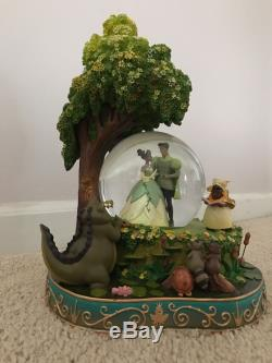 Disney princess and the frog snow globe