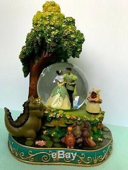 RARE Disney Princess and the Frog Snow Globe